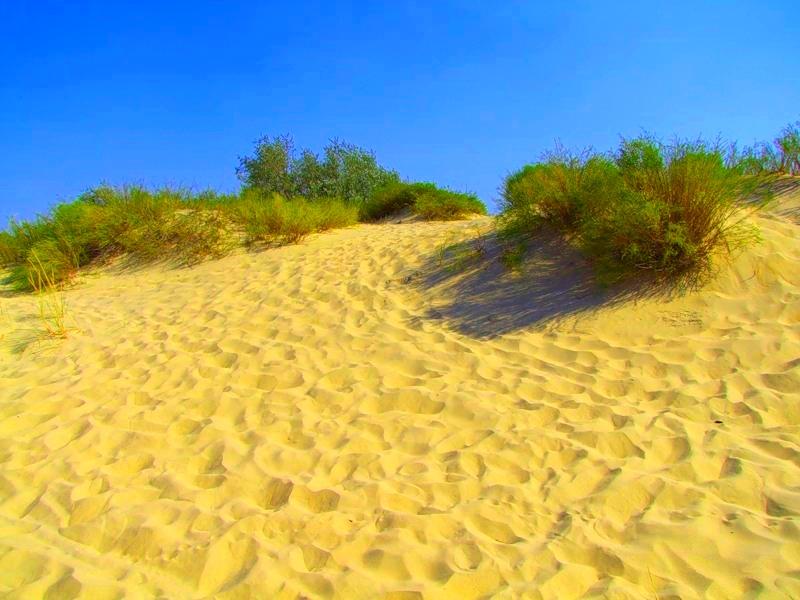 пляж пионерского проспекта в анапе