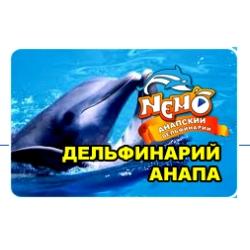 Дельфинарий в анапе на пионерском проспекте