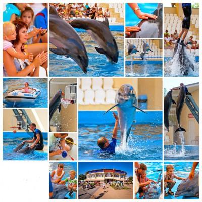 delfinarii v anape